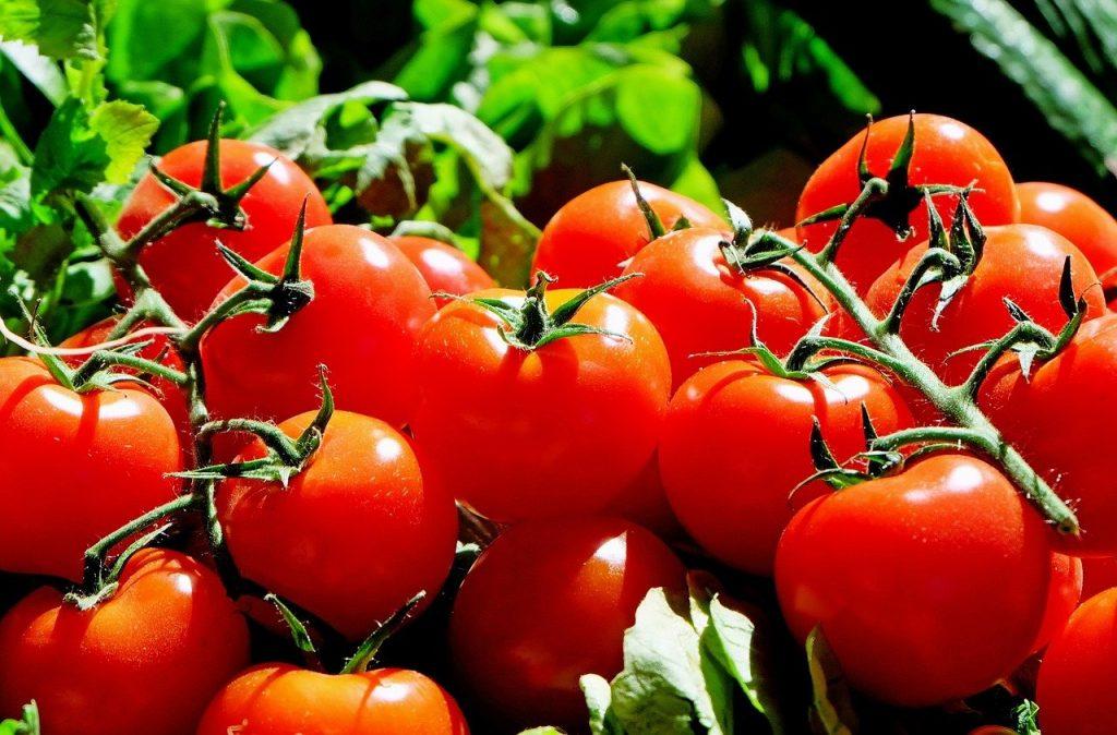 Lista per mese di frutta e verdura di stagione - Pomodori rossi