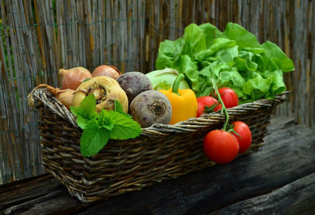 Una dieta sostenibile non contiene carne e non prevede lo sfruttamento dei lavoratori - cestino di verdura