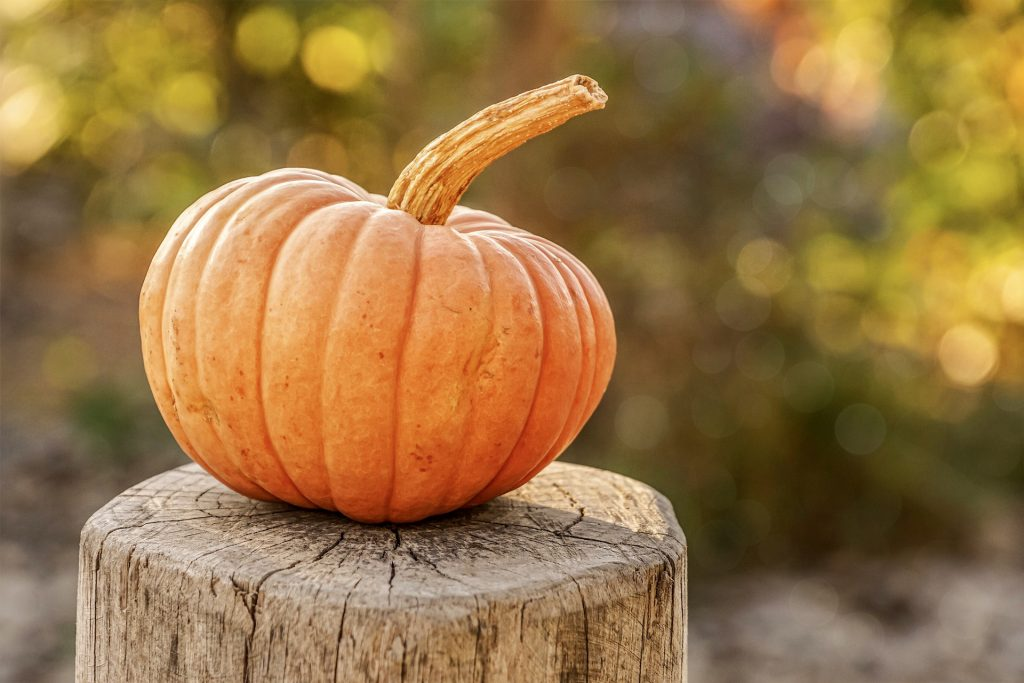 Lista per mese di frutta e verdura di stagione - Zucca arancione